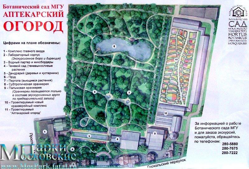 Ботанический сад Московского